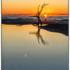 Tidal pool reflection, Folly Beach