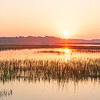 Sunrise over flooded marsh and sound