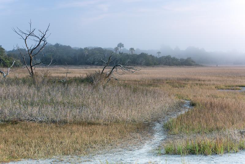 Folly Island marshes and fog