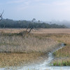 Folly Island marshes and fog