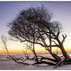 Dawn at the West end of Folly Beach