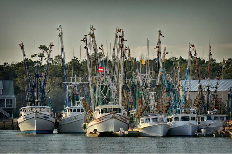 Shrimp boat fleet on Jeremy Creek, McClellanville, South Carolina