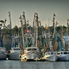 Shrimp boat fleet on Jeremy Creek, McClellanville, South Carolina