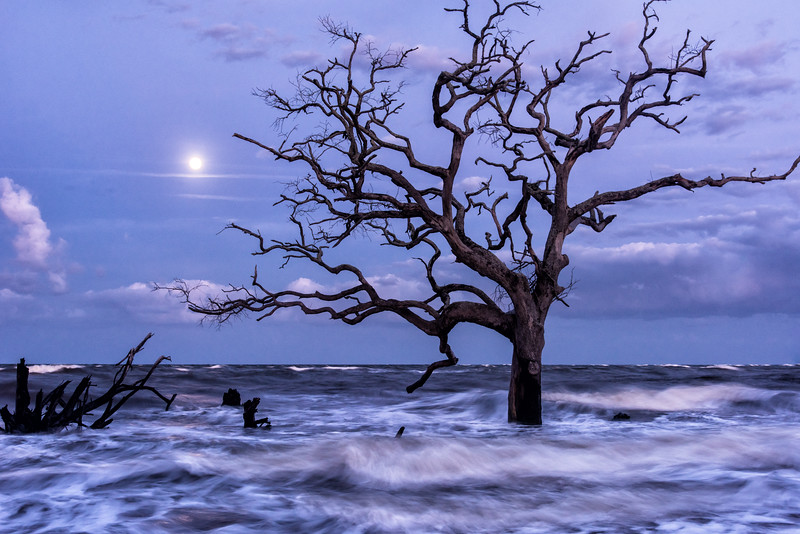 High tide and a full moon at Hunting Island State Park
