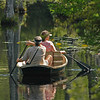 Boating in Cypress Gardens swamp