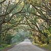 Botany Bay Road, Edisto Island, SC