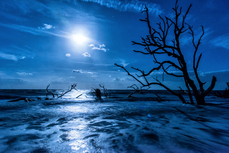 Full Moon at Hunting Island State Park