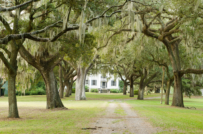 McLeod Plantation house prior to renovation, September 2011