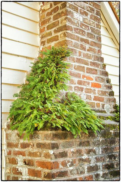 Detail of slave cabin chimney, December 2012