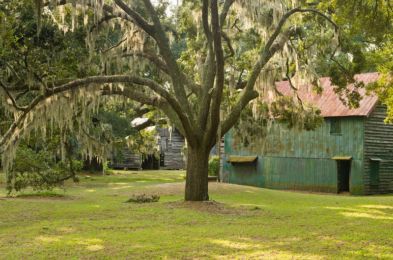 Plantation grounds and Cotton Gin prior to renovation, September 2011