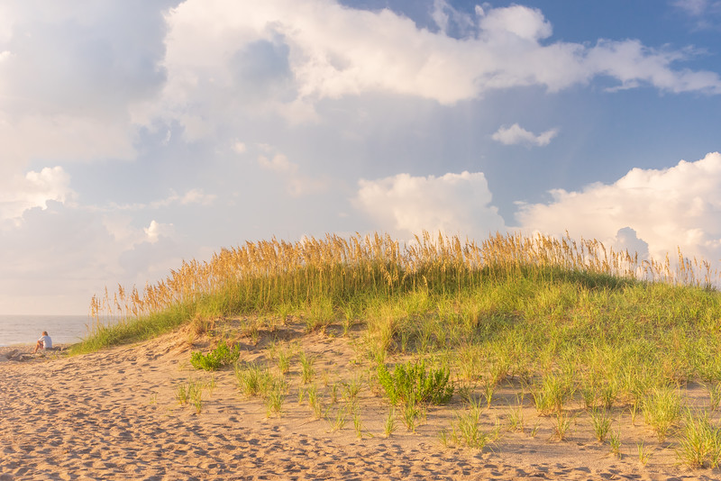 Sand dunes and sea oats near CapeHatteras Lighthouse