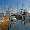 Engelhard, NC Shrimp fleet
