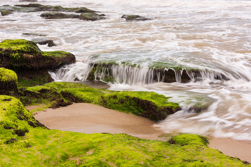 Coquina Rock Outcrop at low tide