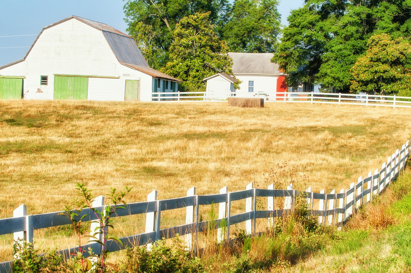 South Carolina farm