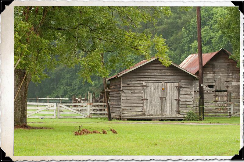 The backroads of Georgia and South Carolina
