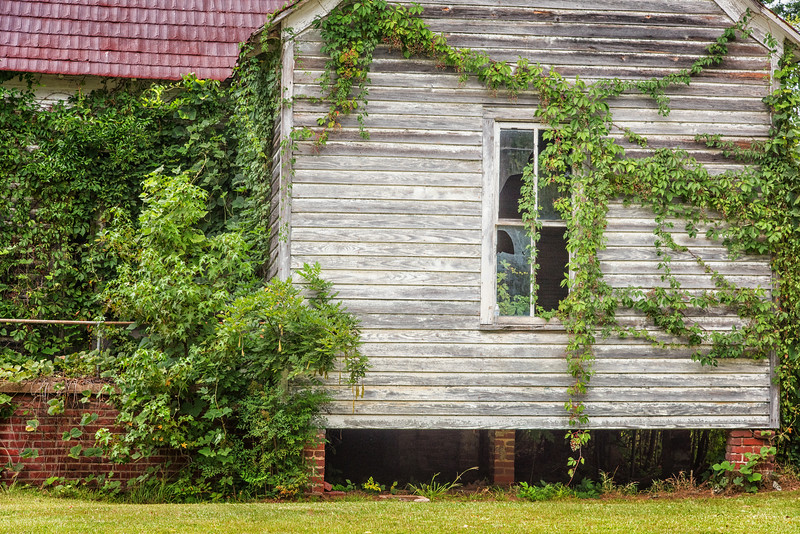 Abandoned house by the roadside, SC