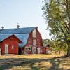 Abandoned farm, SC Hwy.178