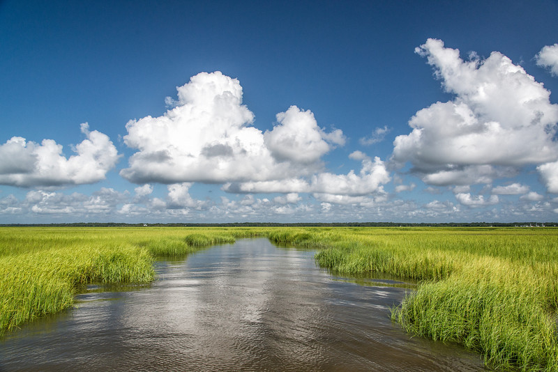Beaufort creeks and marshes