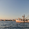 Shrimping in the St. Helena Sound