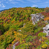 Rough Ridge Overlook in fall color