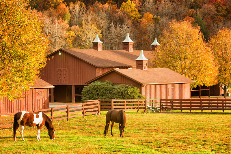 Horse pasture and barns in Valle Crucis