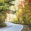 Fall along the N.C.215