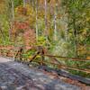 Old iron bridge, Mt. Pisgah forest
