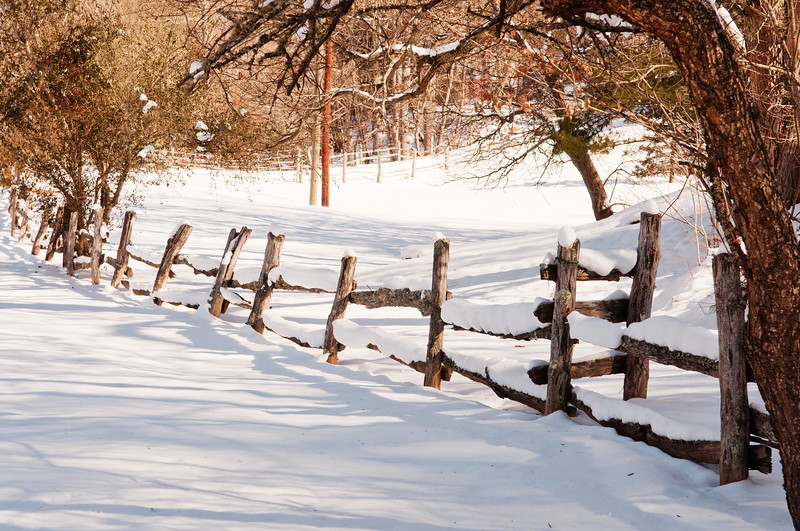 Fence in the snow, NC