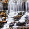Pearson Falls, Tryon, NC