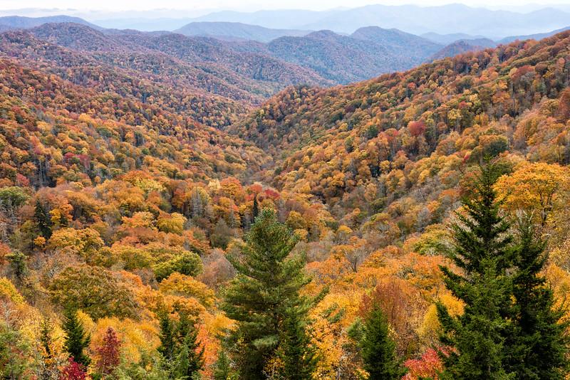 Viewpoint along U.S. Highway 441, Smoky Mountains, NC