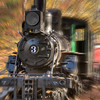 The old engine comes to life - Cradle of Forestry, Brevard