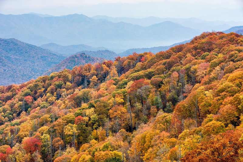 View of the Smoky Mountains from U.S. 441 NC