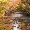 Davidson River, NC-276