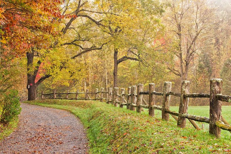 Fall in Transylvania County, NC