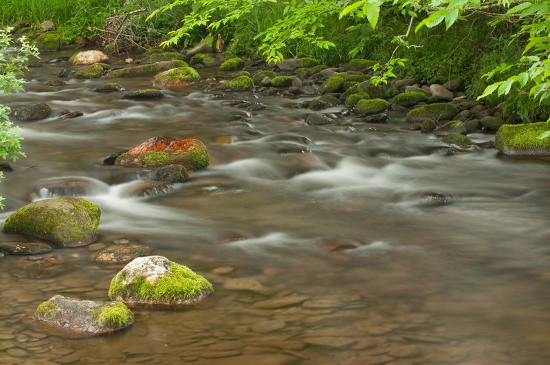Caldwell Creek