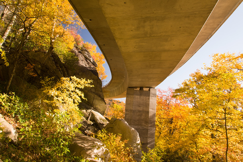 Under the Linn Cove Viaduct, Blue Ridge Parkway