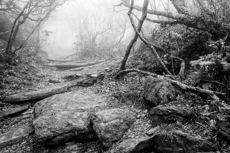 Craggy Pinnacle Black and White
