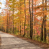 Fall color on Mount Sterling Road, NC