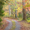 Rural gravel Road in North Carolina