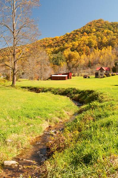 Farm near Spring Creek, NC-209