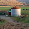 Brevard Farm in the early morning