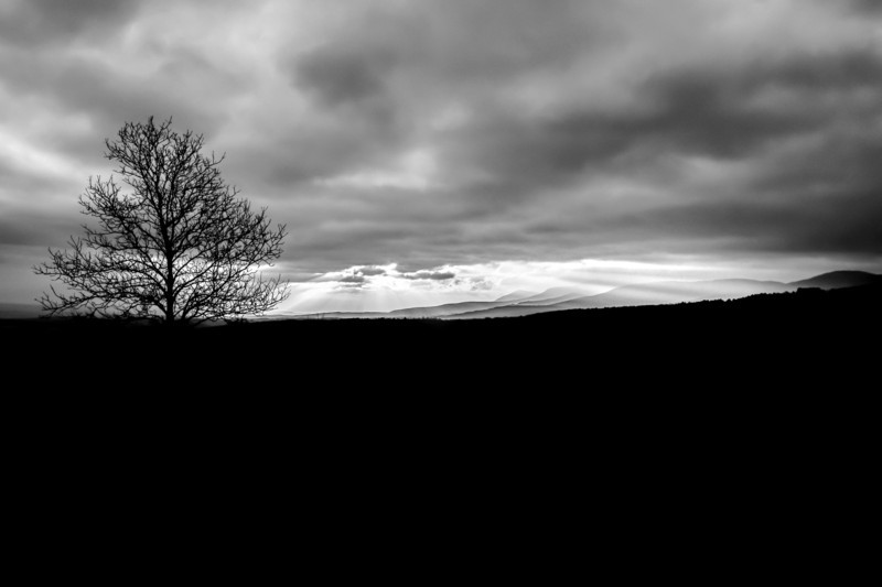 Durham Winter Sunrise