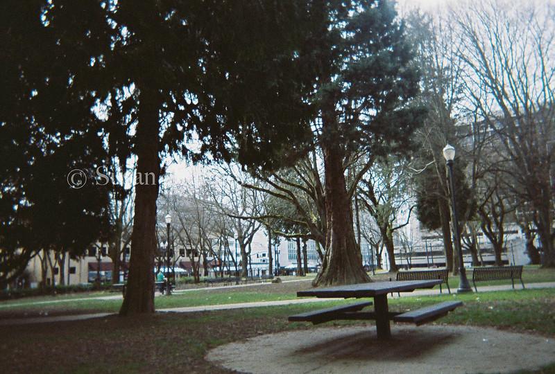 Downtown Portland Lamp Post Park