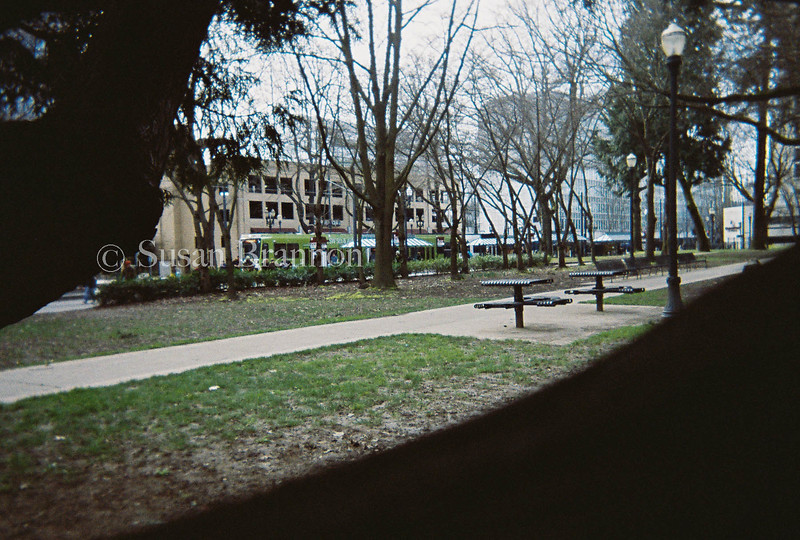 Downtown Portland Park benches