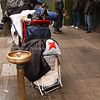 Homeless Food Line