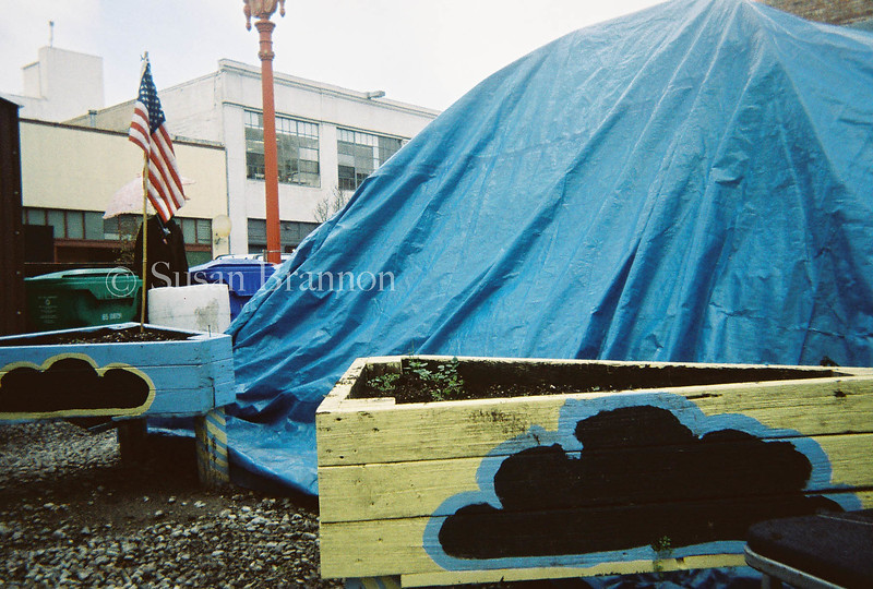 Tent, Flag and potted plants