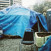 Tent, chair and ant house