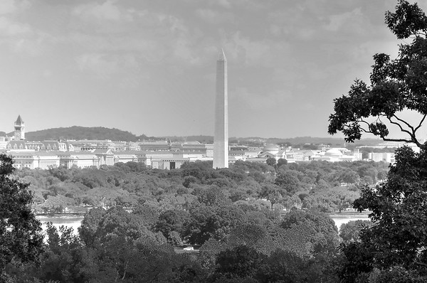 The Washington Monument Towers Above