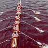 MIT/Harvard/Dartmouth race in 1981.  Freshman ltwt 8.