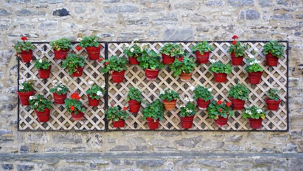 Living Wall - Vieux Montreal